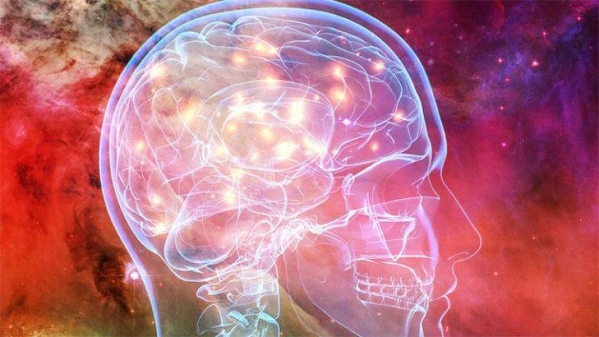 La atención integrada, la práctica del ser en el corazón de la vida