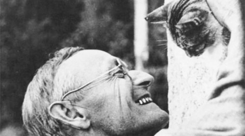 La soledad, según  Hermann Hesse