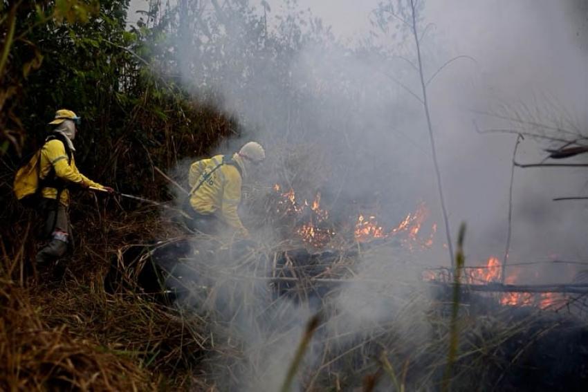 La Amazonía y las claves de un paraíso medioambiental en llamas