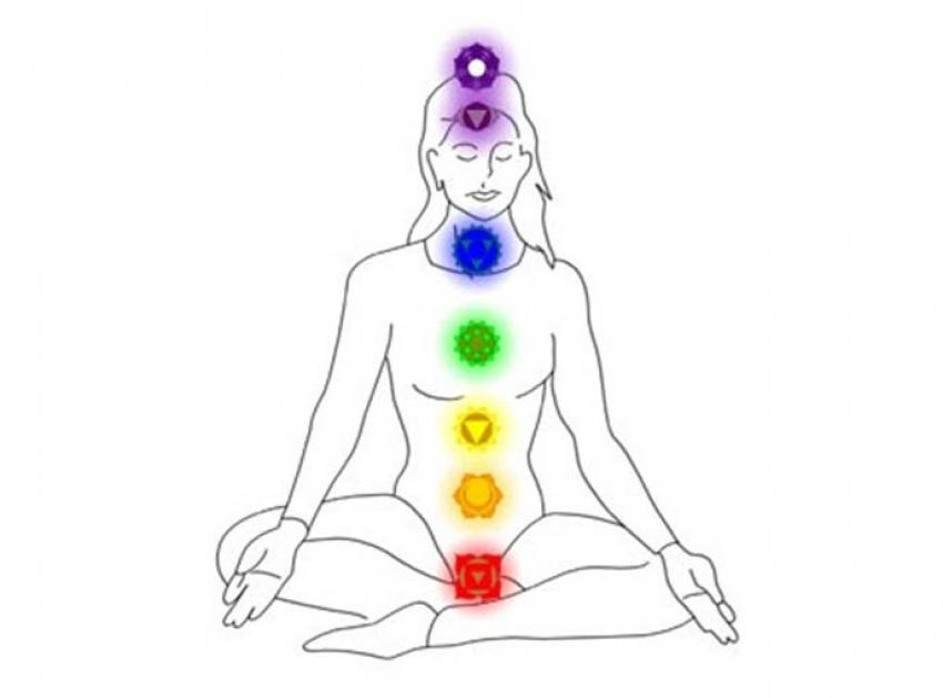 Equilibrando los siete chakras con hierbas y plantas.